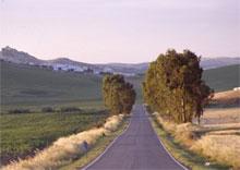 пейзаж Андалусии